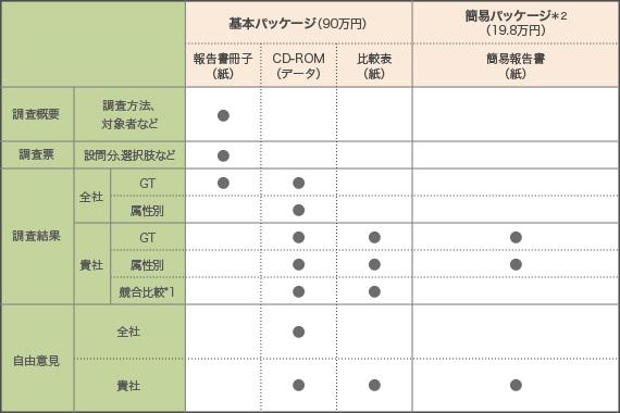 【表1】データサービスにおける納品物の一覧表